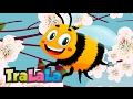 Vine primăvara - Cântece de primăvară pentru copii | TraLaLa