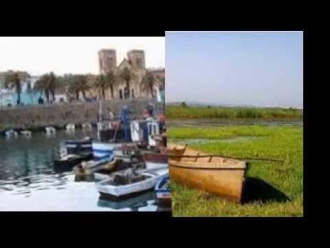 wilaya el tarf