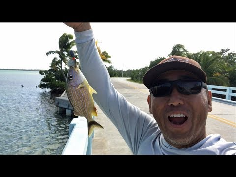 Florida Keys: Back To Fishing The Bridges