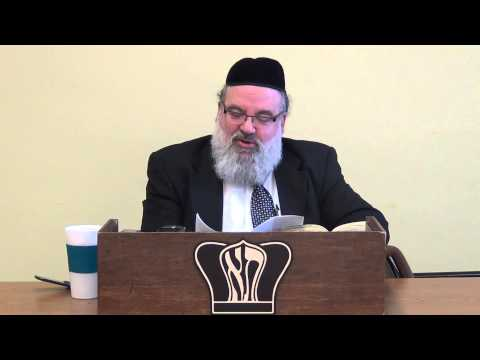 Rav Yisroel Brog: Crucial Instruction & Advice How To Develop Strong & Healthy Children, Immune To