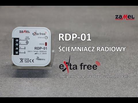 RDP-01