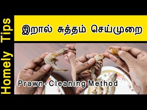How to clean Prawns properly in Tamil | Prawn Cleaning in Tamil | Prawns in Tamil
