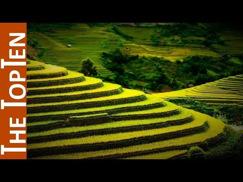The Top Ten Incredible Terrace Fields
