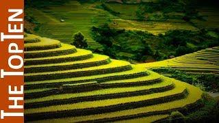 The Top Ten Incredible Terrace Fields