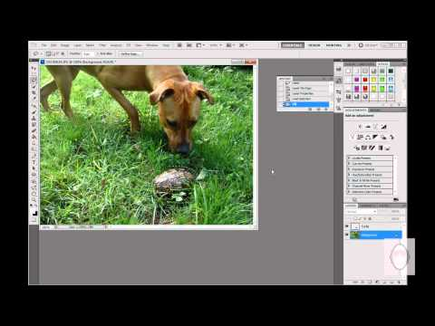 Move an Object in a Photo using Photoshop CS5