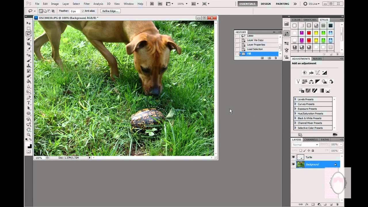Object Moved: Move An Object In A Photo Using Photoshop CS5