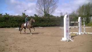 Schooling at Home with Cian O