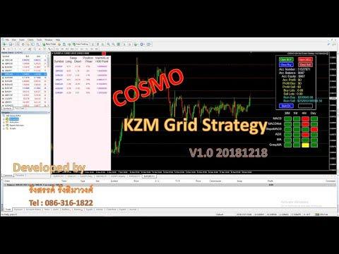 แจกฟรี สุดยอด EA COSMO KZM Grid Strategy (ตอนที่ 2)