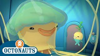 Octonauts - Friends of Octonauts | Cartoons for Kids | Underwater Sea Education