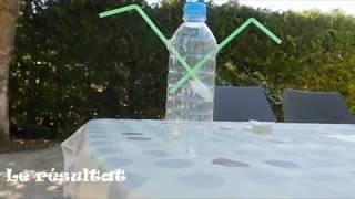 comment fabriquer un aspirateur à insectes gratuitement