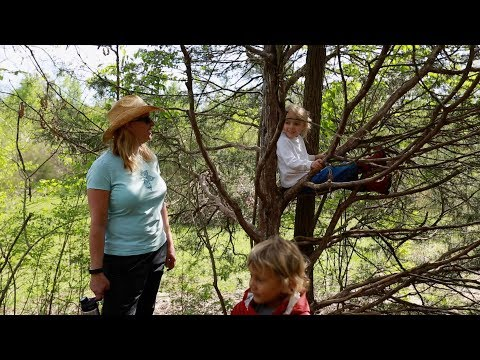 """Nature's Classroom"" - Forest kindergartens in the Tennessee valley"