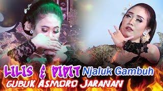Gubuk Asmoro Jaranan - LILIS & PIPIT Njaluk Gambuh MP3