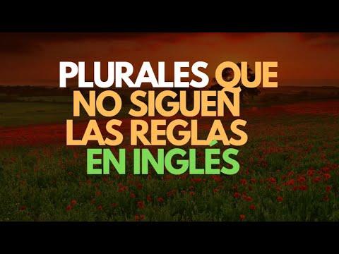 Inglés Americano - Lección 17 - Plurales Irregulares