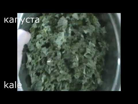 Зимняя зелень: деликатесные оладьи из капусты Кале/Кейл. Wintergreens  Delicious Kale Pancakes
