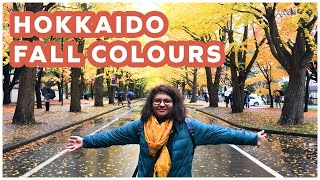 Two Unique Things to do in Sapporo | Chasing Autumn in Hokkaido, Japan
