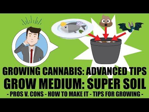 Grow Medium - SOIL (PART 2): SUPER SOIL. Advanced Cannabis Growing Tips  - GROWING CANNABIS 201