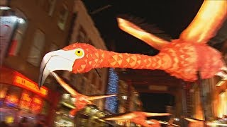 Светящиеся фламинго и цветы на арт-фестивале в Лондоне (новости)