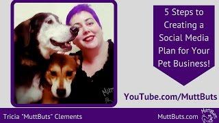 Social-Media-Plan - 5 Schritte zum Erstellen Ihrer Social-Media-Plan für Ihr Haustier-Geschäft