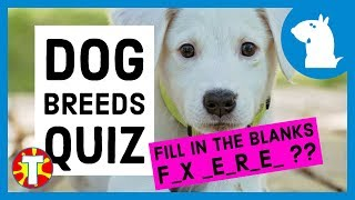 Quiz | Dog Breeds Quiz | Can You Get All 10 Correct?