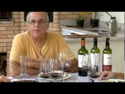 MALBEC  Programa Cabral dos Vinhos by YS Digital