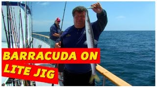 Dan Hooks A Barracuda on Lite Jig | SPORT FISHING