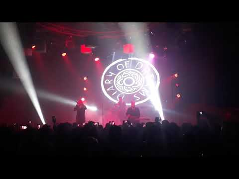 Diary Of Dreams - Traumtänzer Live In Chile 2019
