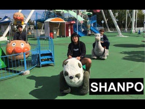 【二部軽音】SHANPO(SHANK)
