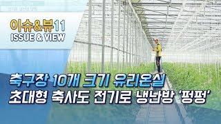 [원가보다 싼 전기②] 축구장 10개 크기 유리온실, …