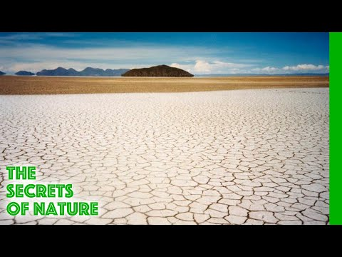 Salt, Tears of the Earth - The Secrets of Nature