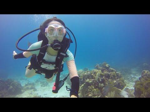 Cancun Scuba Diving Adventures