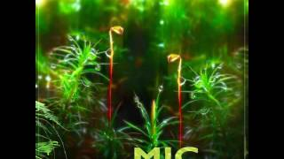 MIC - Vagabondage