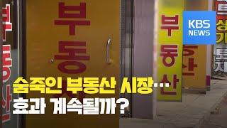 숨죽인 부동산 시장…단기 조정 불가피 / KBS뉴스(N…