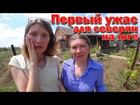 ОБЯЗАТЕЛЬНО сделайте ЭТО когда купите ДОМ НА ЮГЕ! Переезд на ПМЖ в Краснодарский край