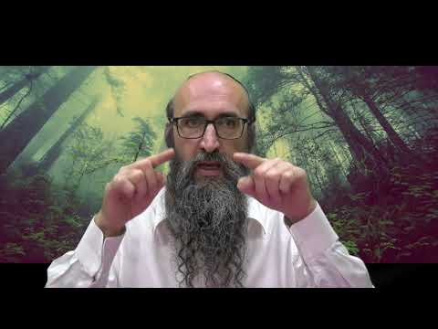 ON VA CHANGER LE MONDE 14 - Le secret des 6 tsadikim, Évitons d'arrondir les angles - Rav Peretz