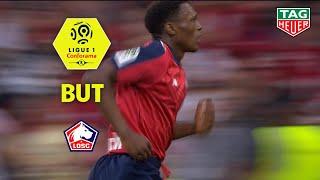 But Lebo MOTHIBA (45') / LOSC - Stade Rennais FC (3-1)  (LOSC-SRFC) / 2018-19