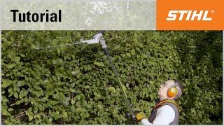 Electric long-reach hedge trimmer cutting technique: overhead cutting with an angled cutter bar