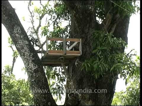 Exact spot where Man-eating leopard of Rudraprayag was killed