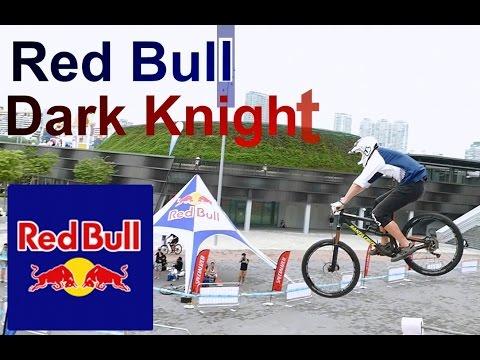 Singapore Red Bull Dark Knights ( 2016 )