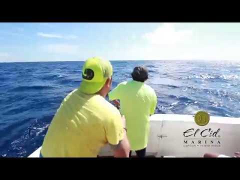 The Best Sport Fishing In Riviera Maya