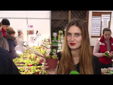 ObjectivTv: У Харкові відкрилась виставка хижих рослин