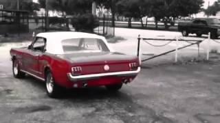 STANG CAB 1966