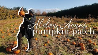 A quick visit to Aldor Acres | VLOG Day 70