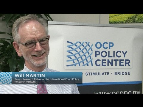 Will Martin - Liberalization and economic development : lessons for developing economies