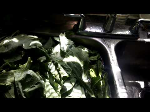 Brussels Sprouts - Cook the Leaves like Collard Greens