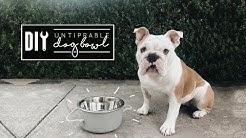 DIY Dog Bowl   Easy + Untippable!