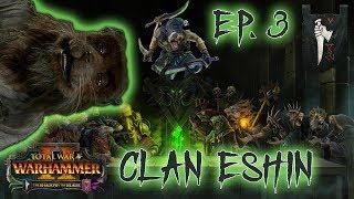 Clan Eshin Skaven Vortex Campaign 3   HUNGY RATS   Total War Warhammer 2