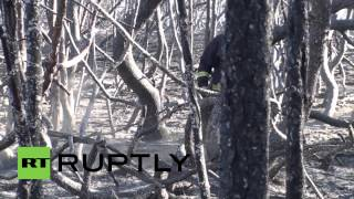 Lithuania: Russian help rejected as UNESCO site burns