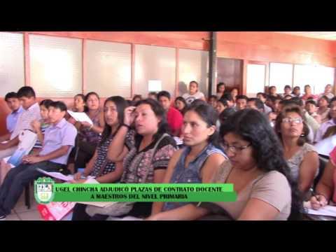 CONTRATO DOCENTES EN EL NIVEL PRIMARIA, UGEL CHINCHA.