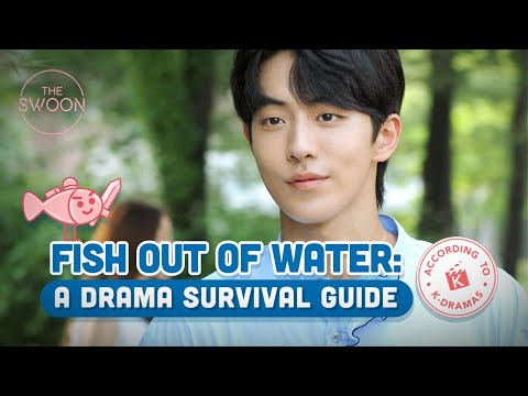 Fish out of water: A K-drama survival guide [ENG SUB]