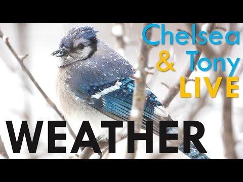 Tony & Chelsea LIVE: Weather Photography, Photo News and Portfolio Reviews!